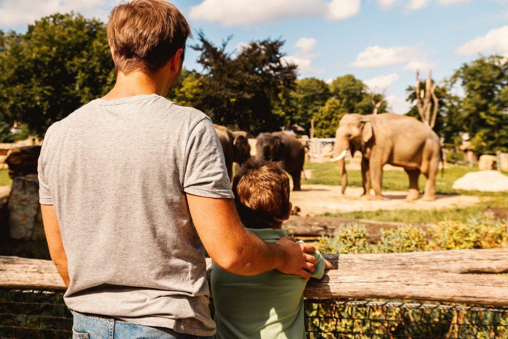 visite d'un zoo avec son enfant. www.montessori-academy.fr